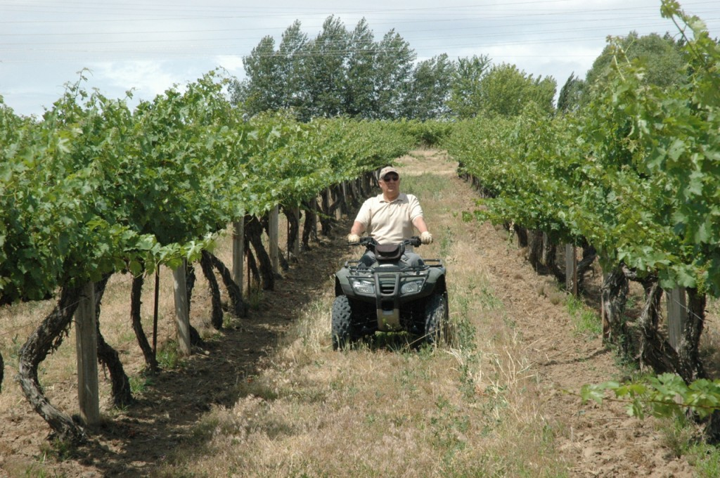 Paul Champoux, owner of Champoux Vineyards and grape grower