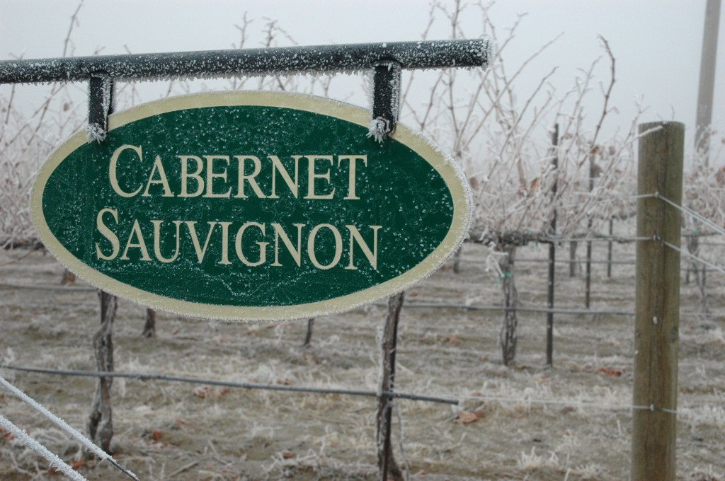 Frost sticks to a vineyard sign on Washington's Red Mountain in December 2011.