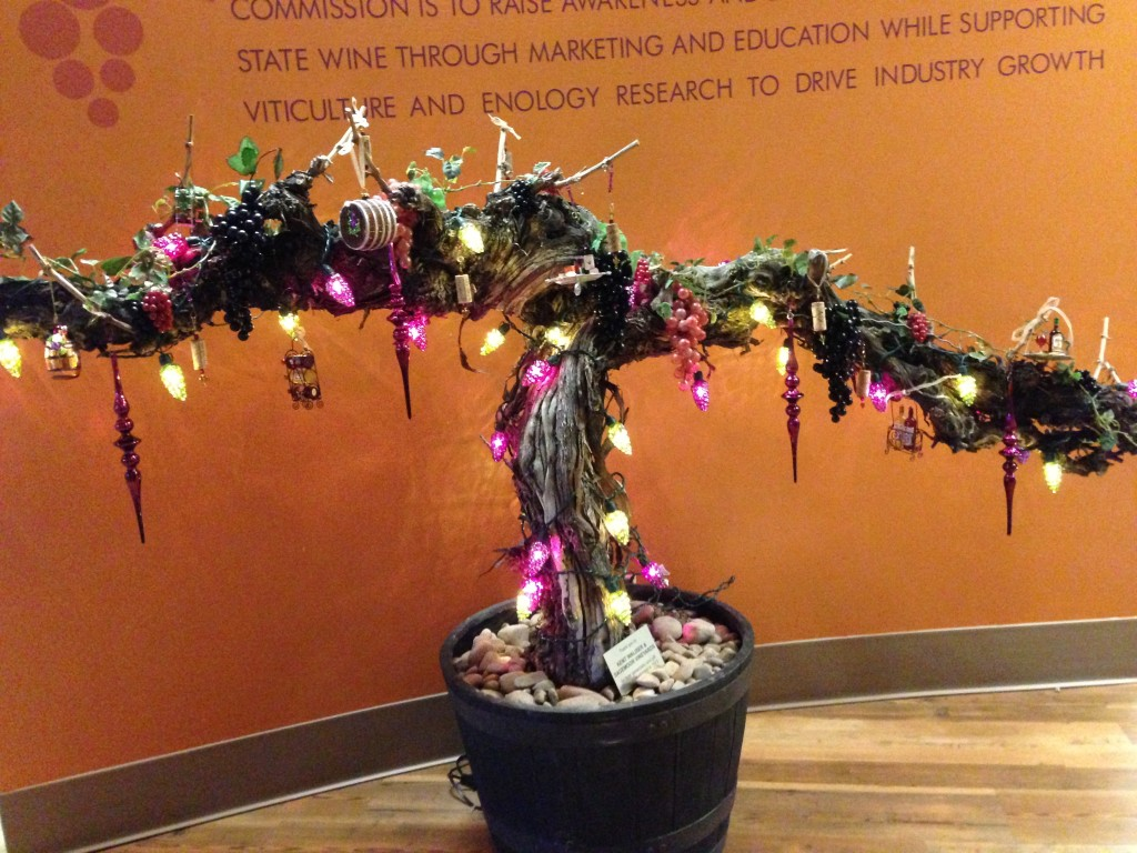 An old grapevine is lit up for Christmas at the Washington Wine Commission.
