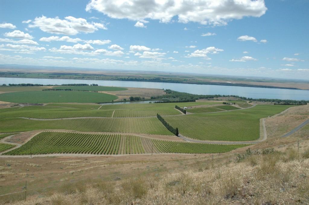 washington wine grape growers will meet in February.