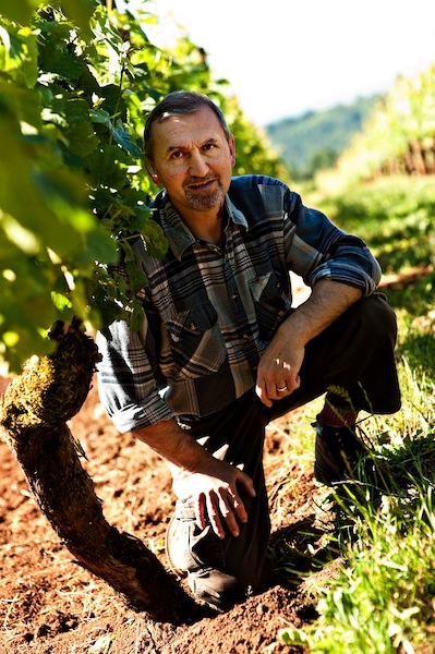 Jacques Tardy, winemaker at Torii Mor in Dundee, Ore., likes what he sees this spring in the Willamette Valley vineyards he works with. (Photo courtesy of Torii Mor Winery)