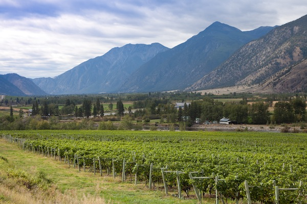 The British Columbia Wine Institute lists 12 wineries and more than 600 acres of vineyard in the Similkameen Valley.