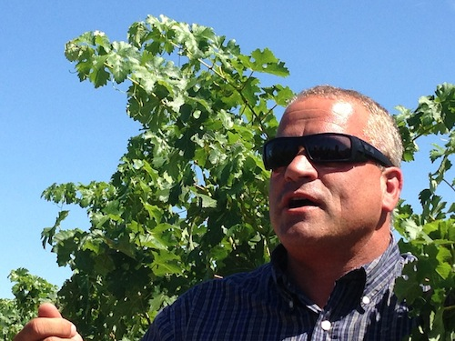 Tom Merkle is a grape grower in Washington state.