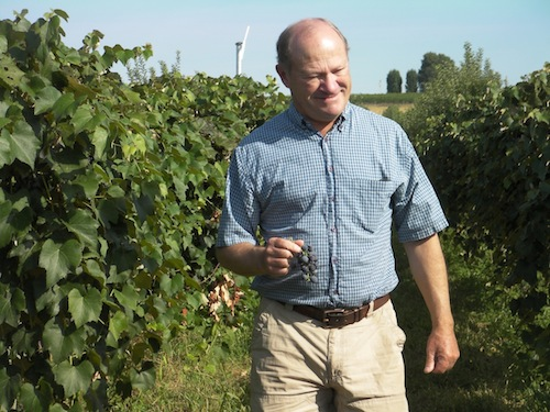 Dick Boushey owns Boushey Vineyard in the Yakima Valley of Washington state.