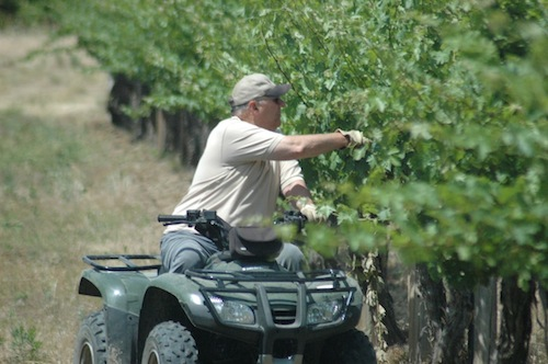 Paul Champoux is owner of Champoux Vineyards. He was stricken by West Nile virus in 2009.