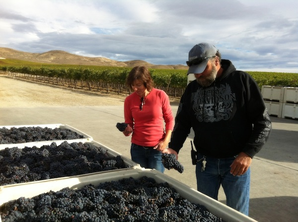 Tedd Wildman, right, manages and co-owns StoneTree Vineyard in Mattawa, Wash. His wife, Anke Freimuth, left, has made wine from the Wahluke Slope site from several Yakima Valley wineries.