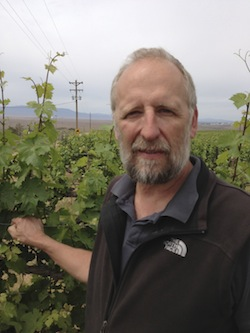 Kent Waliser is the general manager of Sagemoor Vineyards in Washington state. Washington wine harvest will run through October.
