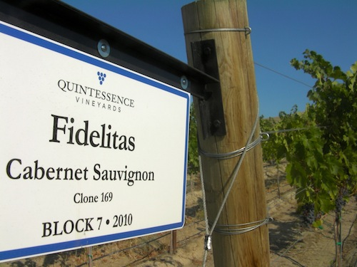 Quintessence Vineyards on Red Mountain grows Cabernet Sauvignon for Fidelitas Wines on Red Mountain, Washington.