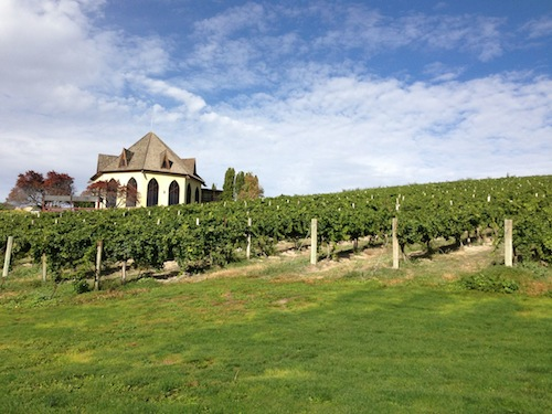 The 2013 Idaho Wine Commission was held at Ste. Chapelle in Caldwell.