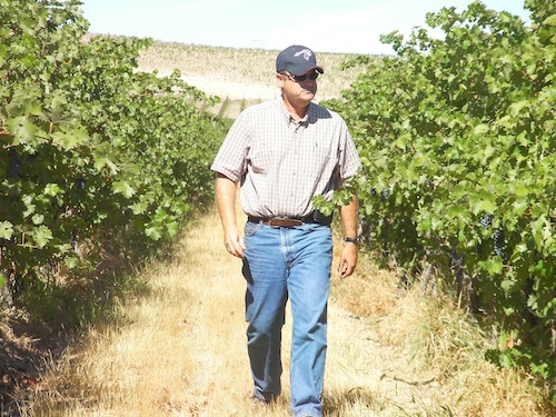 Bob Bertheau, head winemaker for Chateau Ste. Michelle, is one of the Washington wine industry's biggest winemakers.