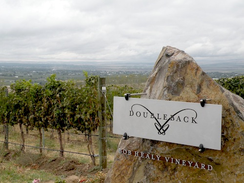 Drew Bledsoe's Bob Healy Vineyard is part of SeVein in the Walla Walla Valley of Oregon.