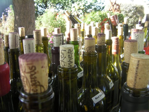 Idaho wine country is a diverse growing region.