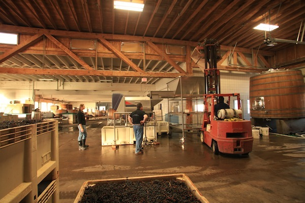 Scott Kelley and Dyson DeMara plan to make PInot Noir, red Bordeaux blends, Syrah, Chardonnay and Riesling at Paul O'Brien Winery in Roseburg, Ore.
