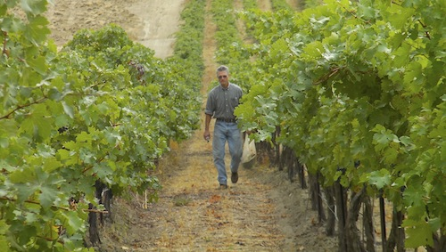 Wade Wolfe is the owner and winemaker at Thurston Wolfe Winery in Prosser, Washington.