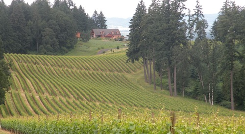 Winter's Hill Vineyard is in the Dundee Hills in Oregon's Willamette Valley.