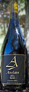 anelare-syrah-2011-bottle