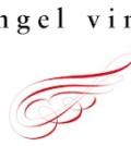 angel vine logo 120x134 - Angel Vine 2010 The Hellion, Columbia Valley, $22