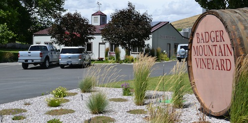 Badger Mountain Vineyard is a certified organic winery in Kennewick, Washington.