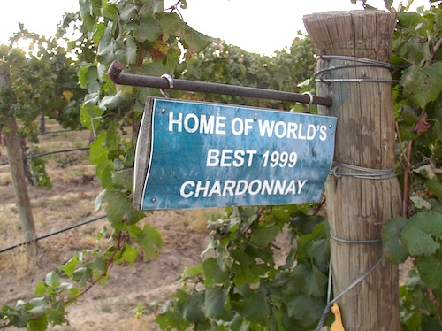Chardonnay is an important wine grape variety in Washington state.