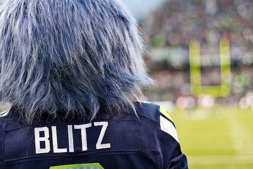 The Seattle Seahawks are playing in the Super Bowl.