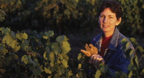 Joy Andersen makes Whidbey's Port.