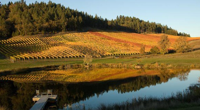 Reustle Prayer Rock Vineyards in Roseburg, Ore., and the rest of the Umpqua Valley Winegrowers Association will celebrate the 30th anniversary of its AVA during 2014.