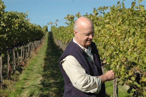 Allen Shoup checks on the quality of grapes at The Benches, an estate vineyard in the Horse Heaven Hills for Long Shadows Vintners.