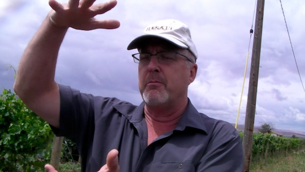 Geology professor Kevin Pogue stands Stoney Vine Vineyard, an estate site of Dusted Valley Vinters and now is within the proposed The Rocks District of Milton-Freewater, Ore.
