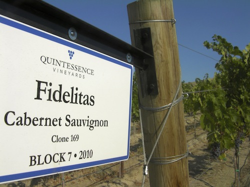 Quintessence Vineyard on Red Mountain is in Washington state and is famous for Cabernet Sauvignon.