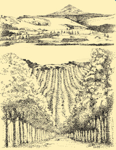 jacob-williams-winery-icon