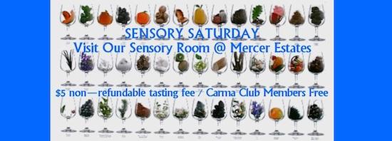 sensory-saturday-mercer-estates-poster