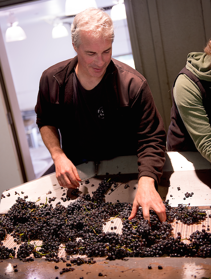 Tony Rynders returned to Oregon in 1997 to take over the winemaking at Domaine Serene for the next 10 years. (Photo courtesy of Bacchus Capital Management)