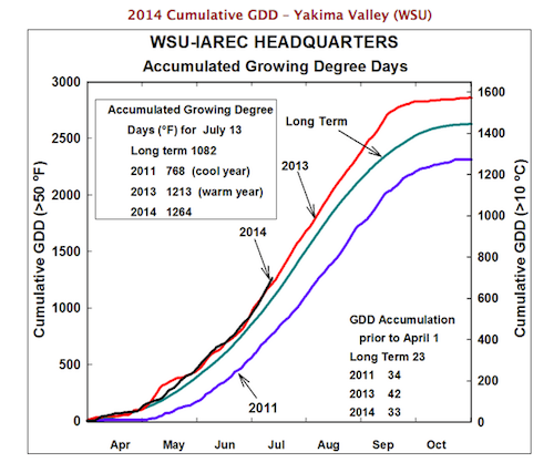 This chart from Washington State University shows how 2014 is comparing with previous vintages and long-term averages with regards to heat units.
