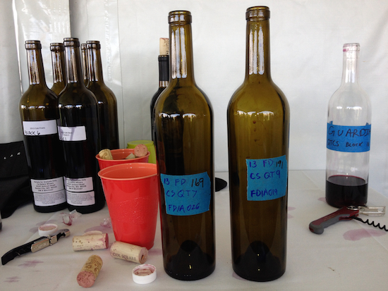 Barrel samples from Col Solare, Fidelitas and Guardian were among those poured at the June 12, 2014 tasting at Quintessence Vineyards on Red Mountain.