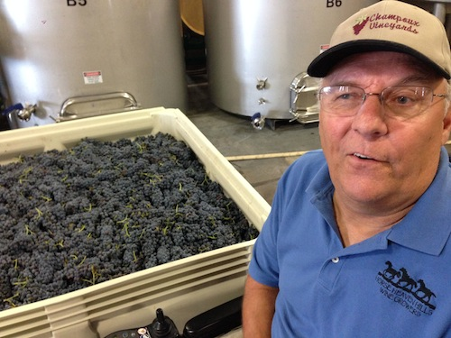 Washington wine grape grower Paul Champoux sits in front of a bin of Marquette, a red grape variety he grows in the Horse Heaven Hills.