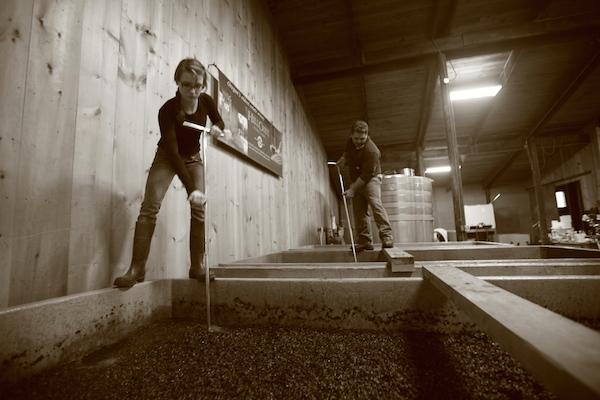 Hanna DeMara and her father, Dyson, work punchdowns on the cement fermenters used at HillCrest Vineyard in Roseburg, Ore.