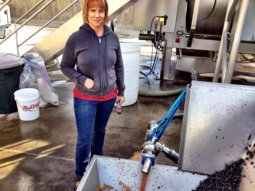 Head winemaker Jessica Munnell checks on Malbec from Spice Cabinet Vineyard on Oct. 1, 2013 at Mercer Estates in Prosser, Wash.