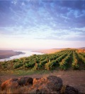 anc feature 120x134 - Great Northwest Destinations: Alexandria Nicole Cellars