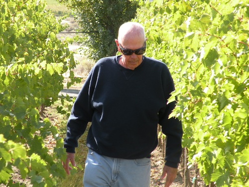 Jim Holmes of Ciel du Cheval during wine grape harvest