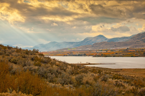 Vineyards and wineries on the Black Sage Bench near Osoyoos, British Columbia are a 10-minute drive from Oroville, Wash.