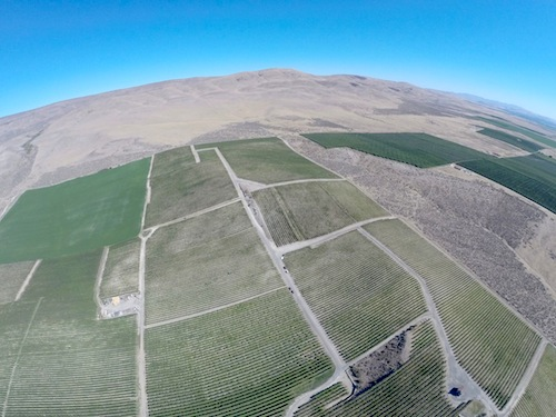 Red Willow Vineyard is in the western Yakima Valley of Washington state.