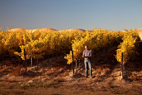 Bob Bertheau is the head winemaker at Chateau Ste. Michelle.