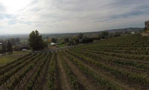 Harrison Hill is a vineyard in Washington's Yakima Valley.