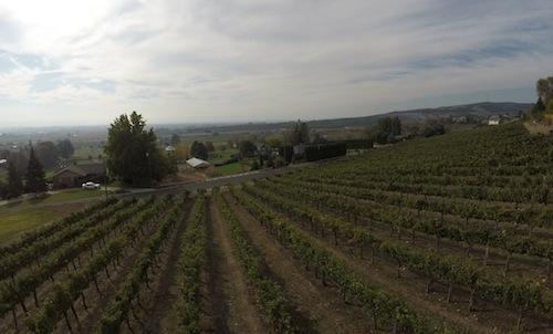 Harrison Hill is a vineyard in Washington's Yakima Valley.
