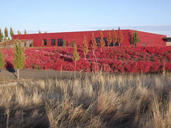 Long Shadows Vintners launched its tasting room in 2007 in Walla Walla, Wash. (Photo courtesy of Long Shadows Vintners)