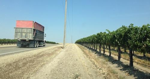 Skyline Vineyard is in Idaho wine country.