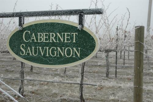 Cabernet Sauvignon from Washington state.