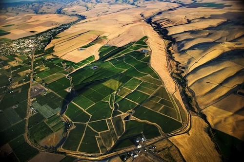 Betz Family Winery is buying and planting a vineyard on the Oregon side of the Walla Walla Valley at SeVein.