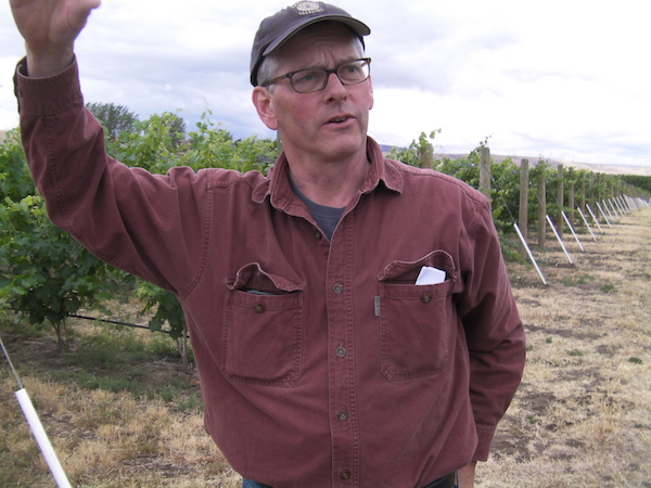 Casey McClellan, winemaker of Seven Hills Winery in Walla Walla, Wash., planted McClellan Estate Vineyard near Milton-Freewater, Ore., in 2003. (Photo by Eric Degerman/Great Northwest Wine)