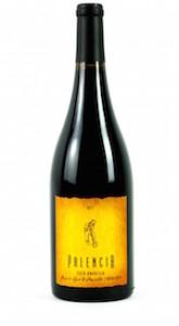 palencia-wine-casa-amarilla-2012-bottle